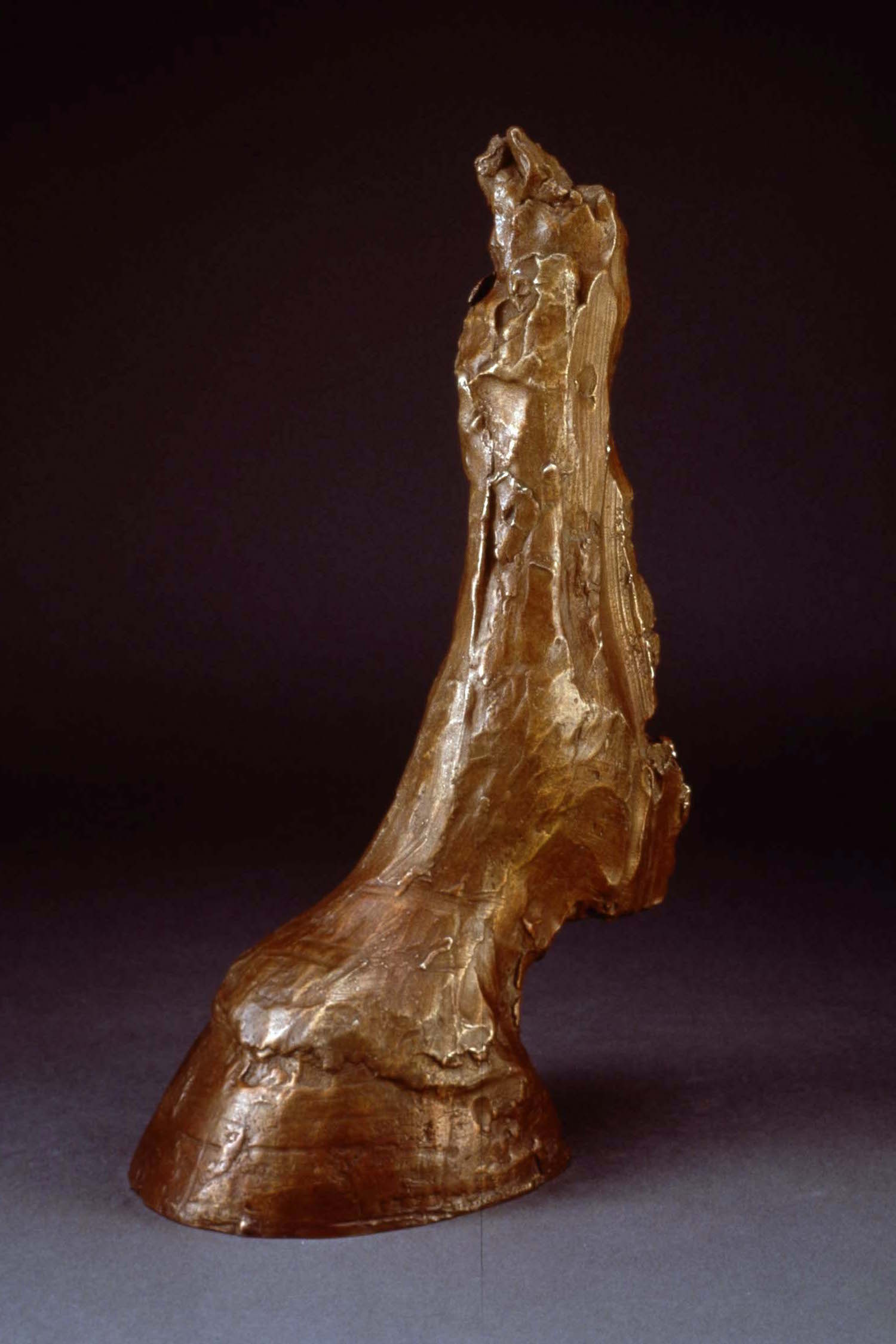 "Horse Hoof (Rough), Dimensions: 15 1/2"" x 9"" x 6"""